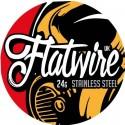 FLATWIRE - FILO FLAT ACCIAIO SS 316L - 10FT (3mt)